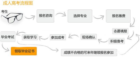 成人高考流程图